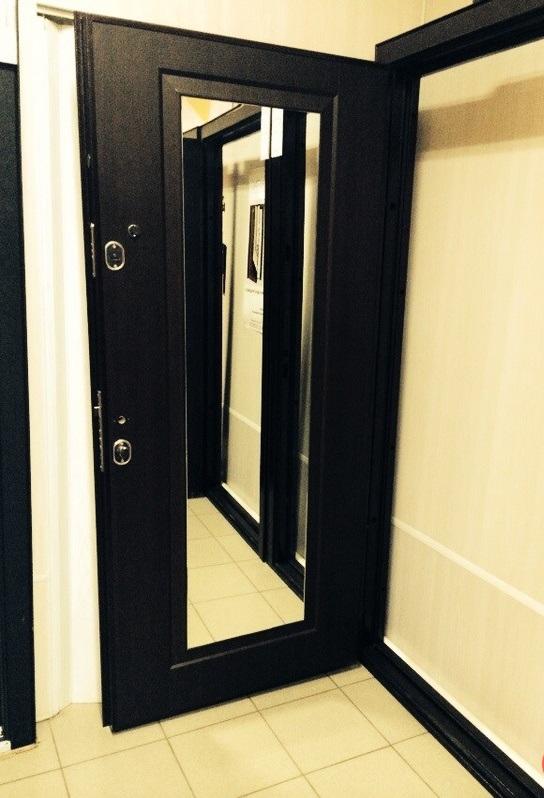 стальные двери с зеркалом на заказ