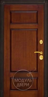 металлическая наружняя дверь стеклопакет