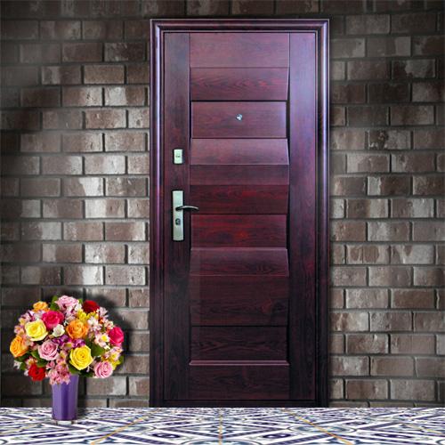 входная дверь в квартиру эконом класса