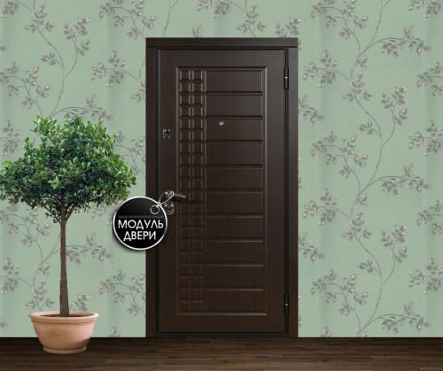 двери металлические в дмитрове для котеджев